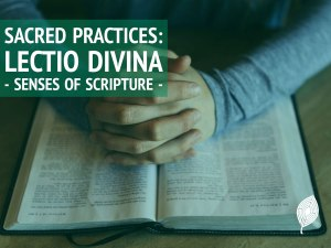 Link to post on Lectio divina
