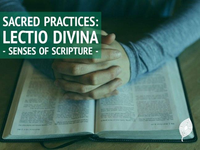 Hands in prayer over an open Bible